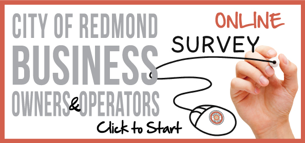 CDD-Business-Survey-Header