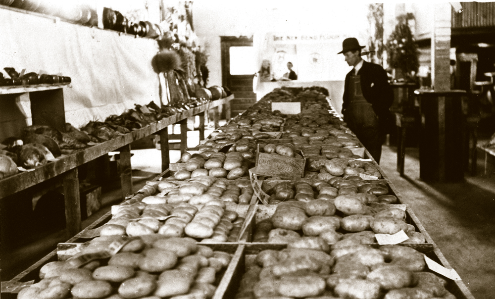 Redmond hosted an annual Potato Festival until the late 1960's.